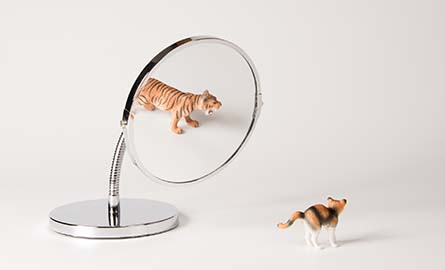 A cat seeing the reflection of a tiger in the mirror